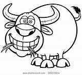 Buffalo Coloring Cape Getdrawings sketch template
