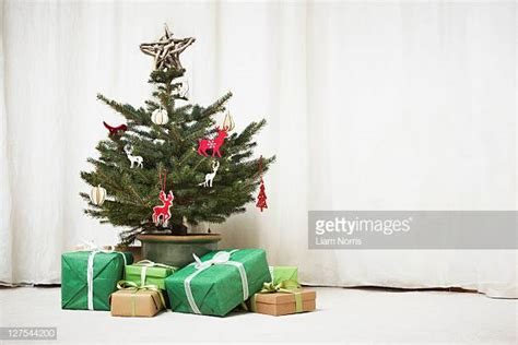 worlds  christmas tree stock pictures