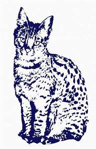Tattoo Folie Selbstklebend : wandtattoo von ihrem foto photo haustier katze ~ Michelbontemps.com Haus und Dekorationen