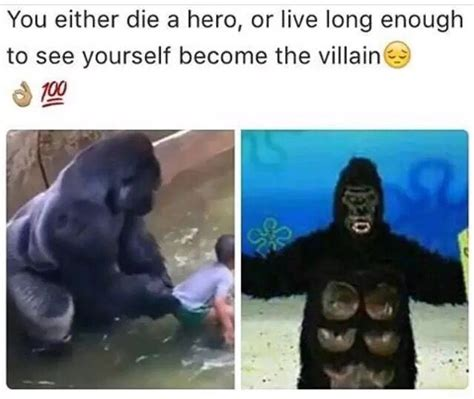 Funny Harambe Memes - 17 best ideas about harambe meme on pinterest funny gorilla memes funny meems and dank memes