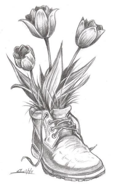 Pencils Sketches Flower Vase