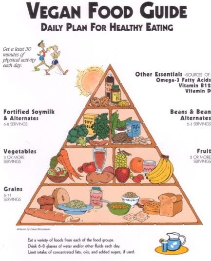 vegan food pyramid      vegan coach
