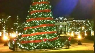 the life of a christmas tree video history of christmas history com