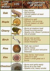 Fact, Of, The, Day, Best, Firewood, Burning, Chart