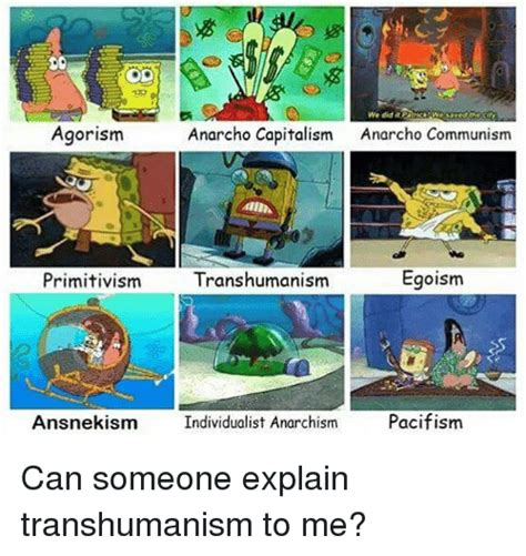 Anarcho Communism Memes - agorism anarcho capitalism anarcho communism egoism primitivism transhumanism ansnek ism