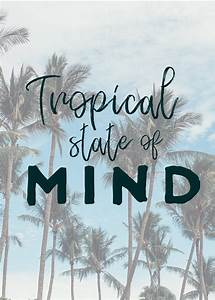 Tropical State ... Inspiring Palm Tree Quotes