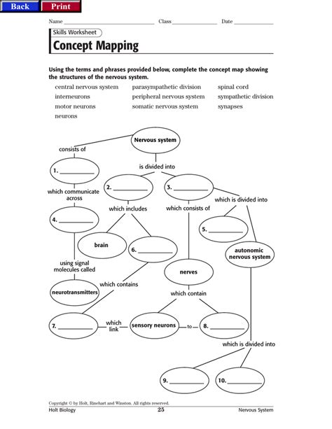 Skills Worksheet Concept Mapping  Resultinfos. Online Masters Degree In Occupational Therapy. Application Development Platform. Adoption Agencies In Idaho Quit Smoking Signs. Internet Identity Theft Plumber Grand Prairie. Loomis Basin Charter School Camry Le Vs Se. Medical Office Certification. Radiologic Technology School. University Of Houston Founded