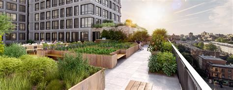 Urban Gardening :  New York's Communal Gardening Movement