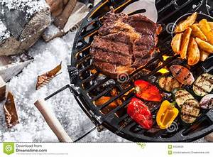 Outdoors winter barbecue stock photo. Image of down, steak - 63538926