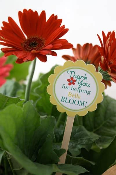 minute teacher appreciation gift skip   lou