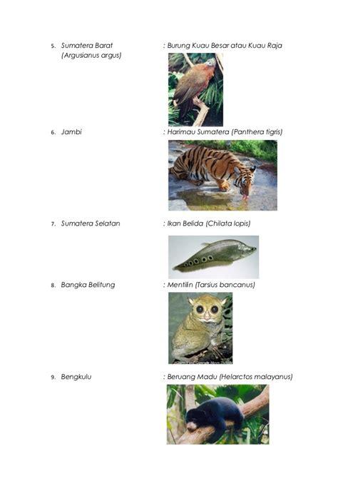 flora  fauna maskot  indonesia