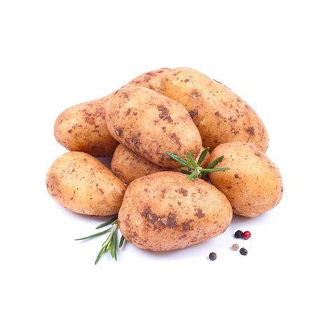 cuisiner pomme de terre nouvelle pommes de terre nouvelles pommes de terre légumes