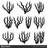 Algae Drawing Getdrawings Silhouette Symbol Icon Vector Alamy sketch template