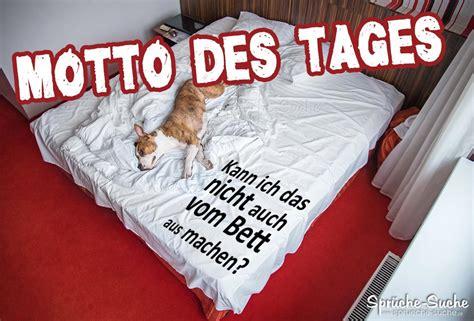 Hund Im Bett  Motto Des Tages Spruch Sprüchesuche