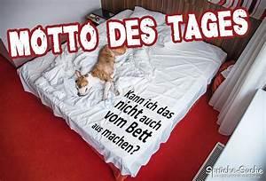 Bilder über Bett : hund im bett motto des tages spruch spr che suche ~ Watch28wear.com Haus und Dekorationen