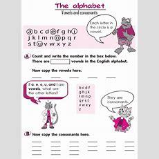 Grammar » Grade 2 Grammar Lesson 2 The Alphabet Vowels