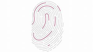 How To Use Touch Id On An Iphone