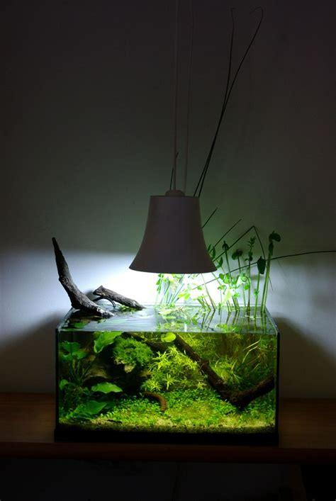 chauffage pour petit aquarium best 25 nano aquarium ideas on betta tank fish tank and nano tank