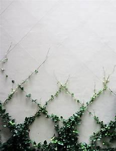 Gitterwand Für Pflanzen : die besten 25 plantas enredaderas ideen auf pinterest plantas enredaderas con flores ~ Markanthonyermac.com Haus und Dekorationen
