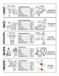 Upper Body Workout Routine
