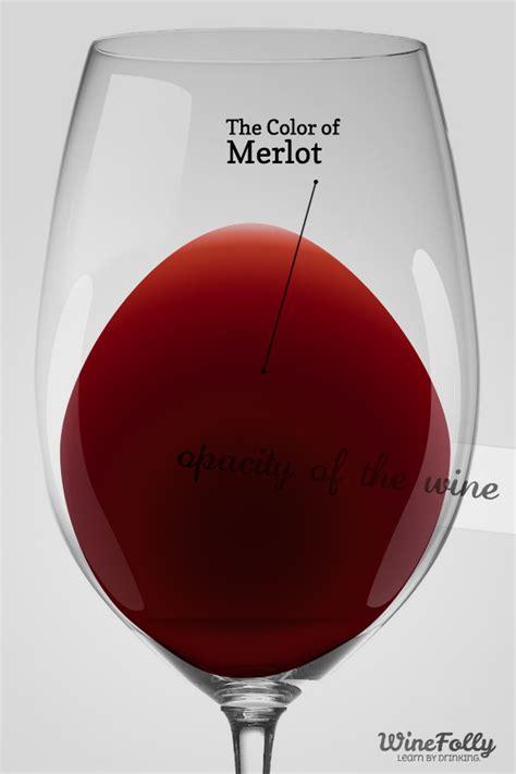 guide  merlot wine taste regions  food pairing