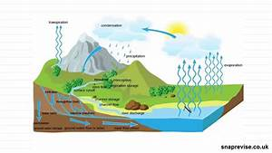 The Water Cycle  Part 2