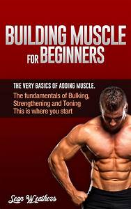 Building Muscle For Beginners  The Very Basics Of Adding Muscle   Sean Weathers Fitness