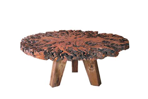 lynchee fruit tree root table