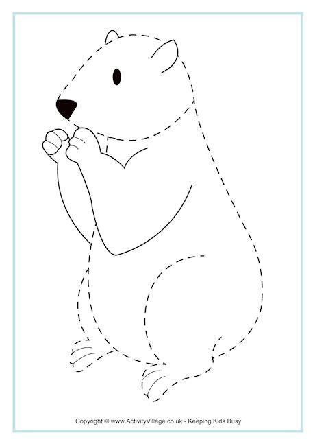 groundhog tracing page