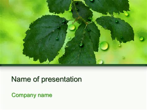 tree branch powerpoint template