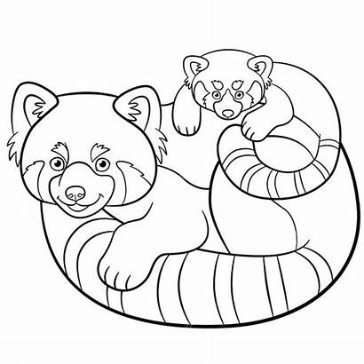 Panda Coloring Pages Printable Colorings Getdrawings Getcolorings