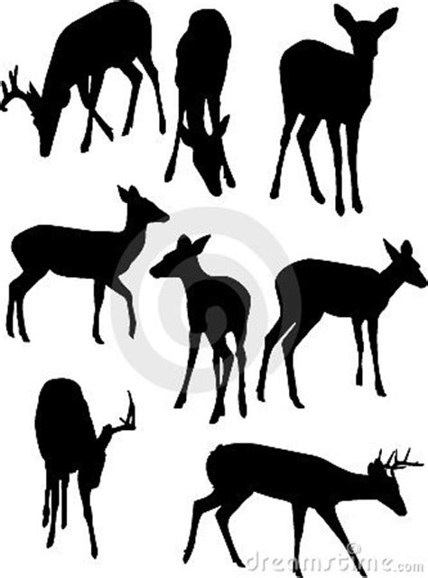 deer silhouettes stock photography image