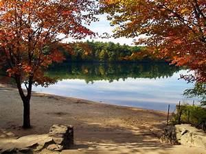 Walden Pond State Reservation (Concord)