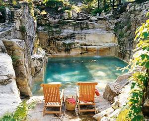 Natural Backyard Swimming Pool Converted From An Old