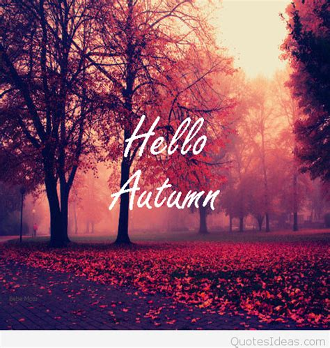 Fall Backgrounds And Quotes by Hello Autumn Leaves Quote Hd Wallpaper