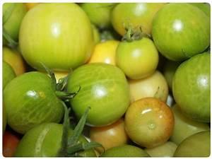 Grüne Tomaten Nachreifen : kleingartenverein am frankenfeld ~ Lizthompson.info Haus und Dekorationen