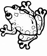 Frog Coloring Tree Clipartmag sketch template