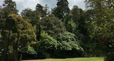 trees grounds  gardens university  exeter