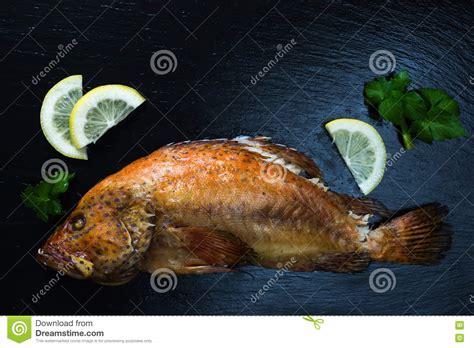 grouper stone coral celery baked lemon wet fish dark preview