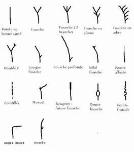 Comment Se Couper Les Cheveux Court Toute Seule : cheveux fourchus voil pourquoi ils ne poussent plus ~ Melissatoandfro.com Idées de Décoration