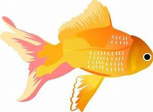 Fish Vector Free - Cliparts.co