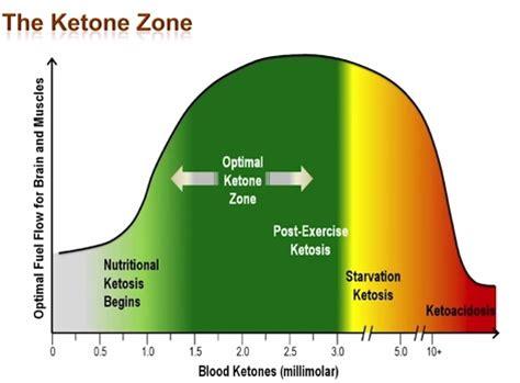 uncategorized nutritional ketosis