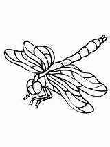 Coloring Dragonfly Drawing Insect Clipart Dragonflies Wings Printable Nature Leaf Supercoloring Drawings Fauna Sheets Dragon Select Adult Bees Eating Cartoons sketch template