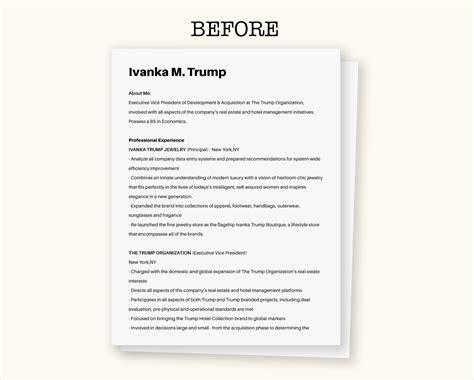 resume elon musk resume regularguyrant best resume site