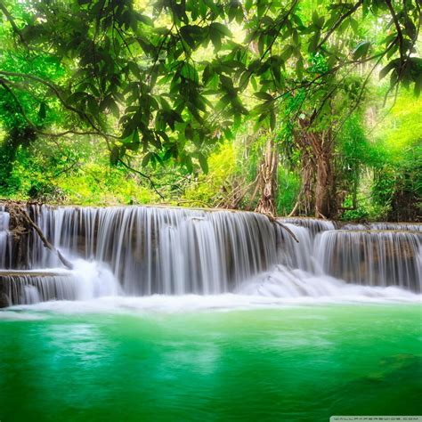 portrait hd nature wallpapers  mariacenourapt