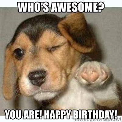 Puppy Birthday Meme - happy birthday dog meme