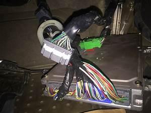 D15b Engine Wiring Harness Oem Engine Wire Harness Wiring
