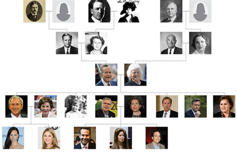 bush family tree wsjcom