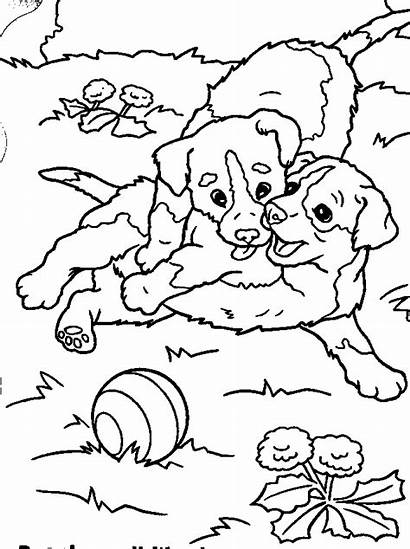 Coloring Puppy Pages Puppies Playful