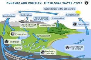 Interactive Diagram Of The Water Cycle